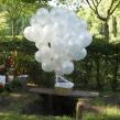 Begrafenisreportage Oud Valkeveen 001